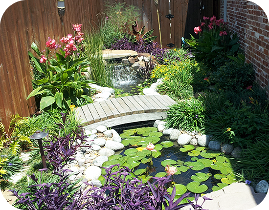 Home plm professional landscape mgmt landscaping for Garden design landscaping dallas tx